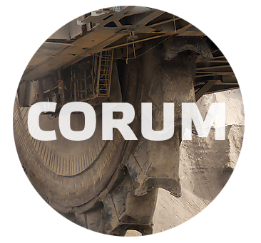 "Сайт компании ""Corum Group"""